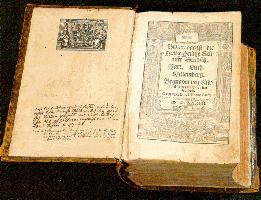 Interesting Facts about Document Translation for the Bible