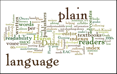 The Meaning of Plain Language in Translation Service